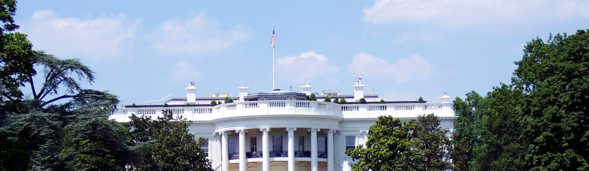 Executive Action: Time Limited Progress